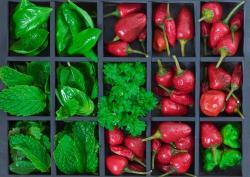 krydderurter-herbs